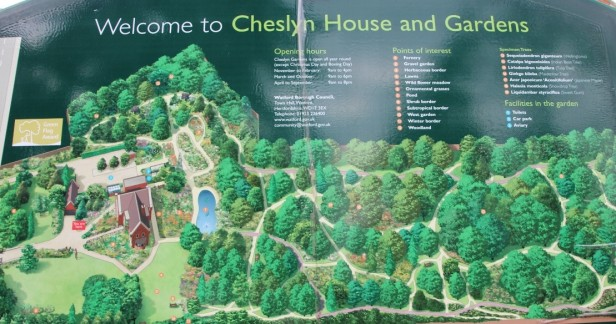Cheslyn map